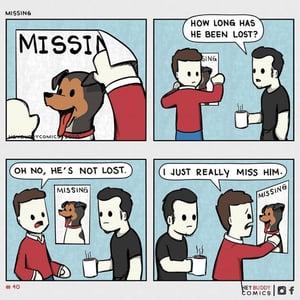 missingg dog